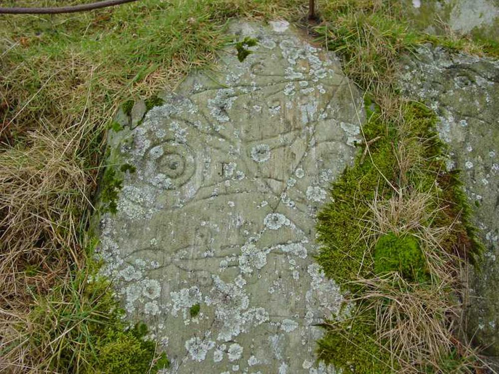 Pictish carving, Trusty's Hill